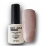 VERNIS PERMANENT EASY LAQUE AXESS 019