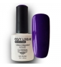VERNIS PERMANENT EASY LAQUE AXESS 021