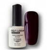 Vernis Permanent Easy Laque Axess069